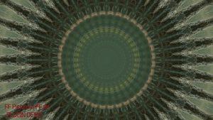 Mandala Kaleidoscope Plugin